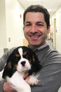 A veterinarian holding a Cavalier King Charles Spaniel